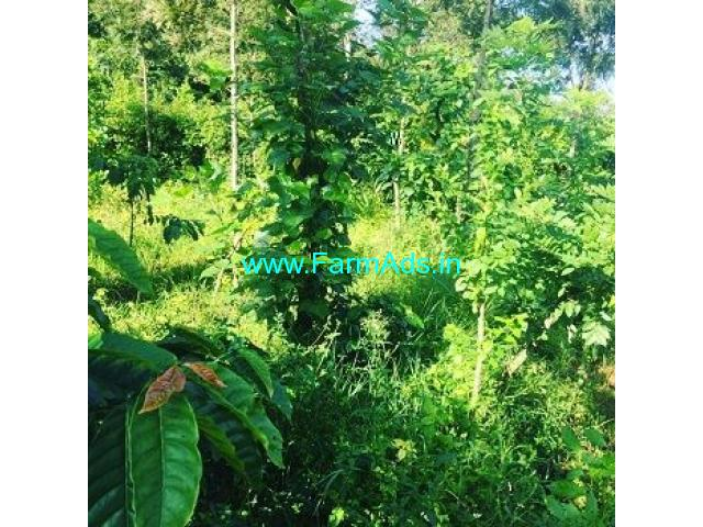 2.1 Acre Coffee Land for Sale Near Mudigere