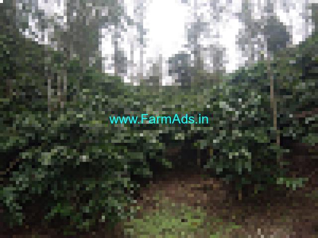 18 Acre Coffee Estate for Sale in Madikeri