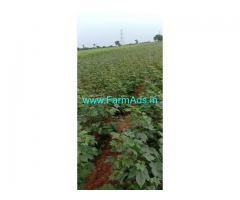 5 Acre Farm Land for Sale Near Motakondur.