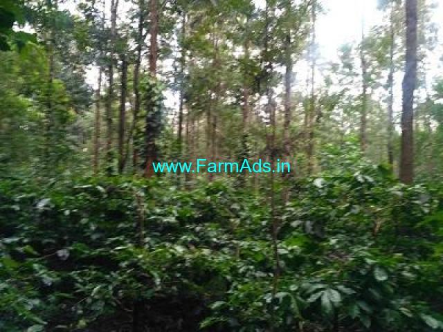 10 Acre Farm Land for Sale Near Chikmagalur, 13 KM away from city