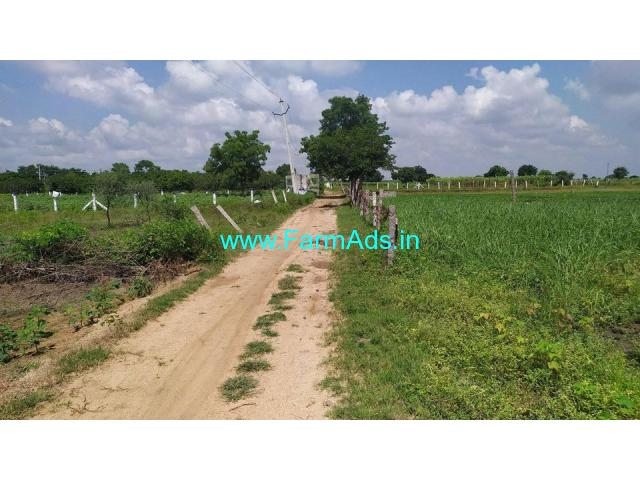 12 Gunta Of Agriculture Land For Sale at Humnabad