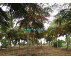 3.25 Acres Coconut Farm for sale at Dharapuram
