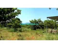 24 Acres Cultivated Farm For Sale at Singarapetta, Chengam Taluk
