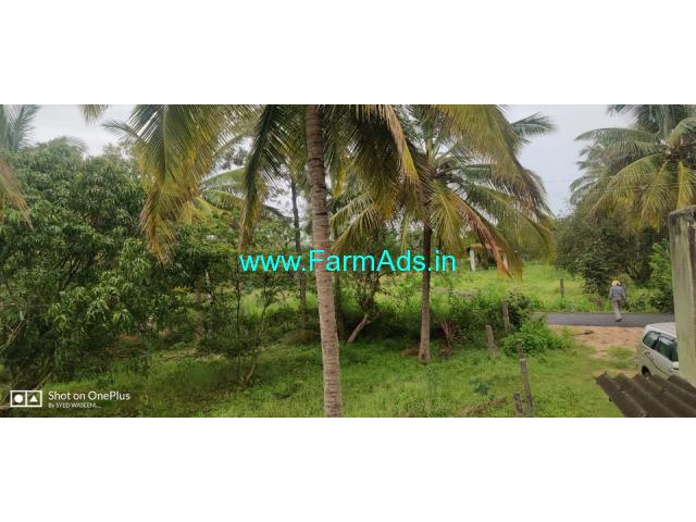 13 Acers Green farm with assorted trees for sale at Kunigal Taluk