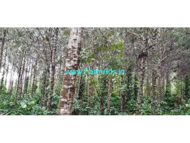 4.5 Acre Coffee Estate Land for Sale Near Belur.