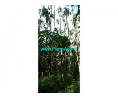 2.13 Acre Farm Land for Sale Near Koppa