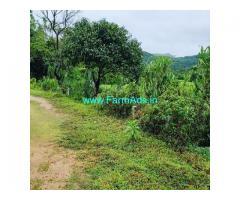 2.5 Acre Farm Land for Sale Near Mudigere