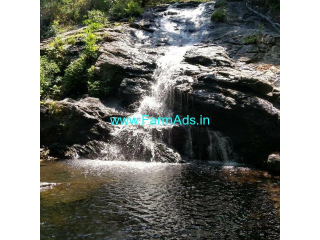75 Acre Coffee Land for Sale Near Chikmagalur