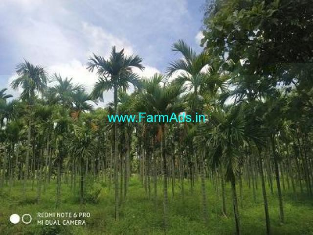 1.18 Acre Farm Land for Sale Near Chikkamadure