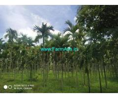 1.18 Acre Farm Land for Sale Near Chikkamadure