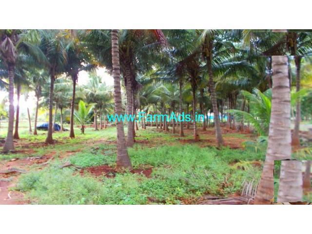 12 Acres Coconut farm for sale in Theni, Kumbum - Kumuli road.