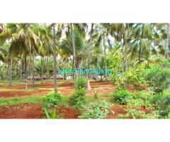 11 Acres Coconut Farm for sale near Annamalai, 9 KMS
