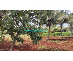 9 Acres Developed Farm Land for sale 50 KMS from Mysore.