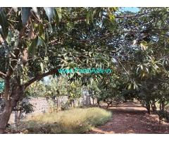 50 cents Farm house land sale at Red hills