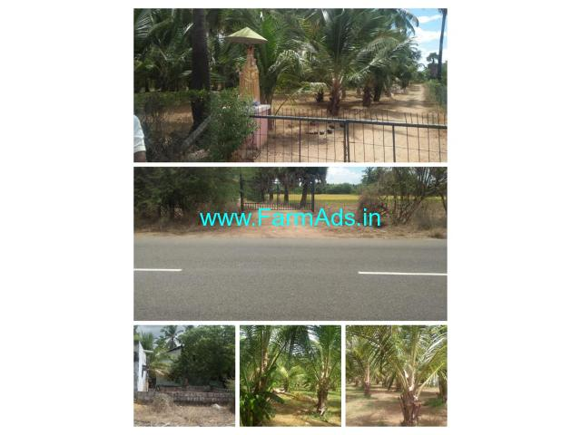 25 Acres Farm Land with Room For Sale Nazareth Sathankulam main road