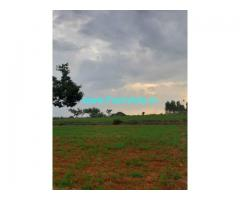 3 Acre Farm Land for Sale Near Basaralu, Mandya Nagamangala road