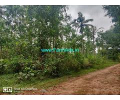 4.65 Acres Farm Land For Sale In Karkala, Bailoor