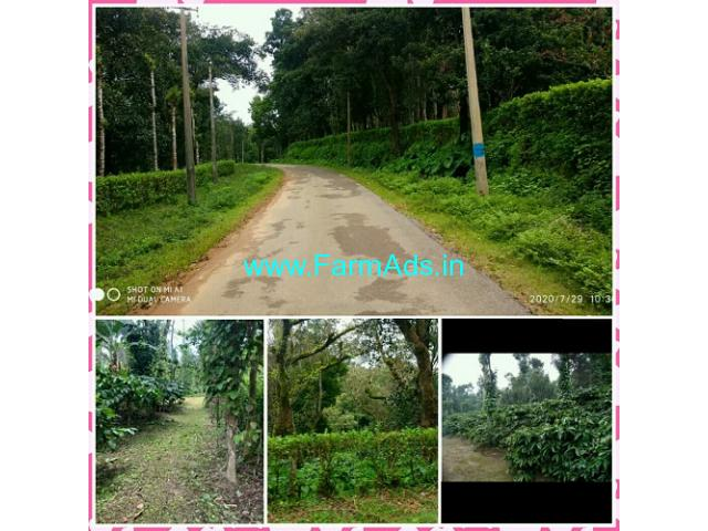 4 Acres Well maintained Coffee Estate for sale, 8 KMS from Virajpet