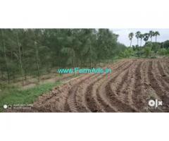 10 Acres farm land for sale at Attur Taluk, Salem District