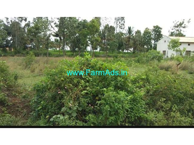 5 acre farm land for sale near Mandya. Land to mandya 13 km