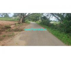 1.10 Acres Agriculture Farm land for sale near Bangalore. Gudemarnahalli.