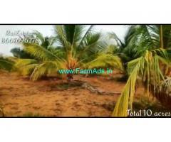 10 acres Coconut Farm Land for sale at Narikudi, Thoothukudi.