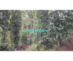 1.80 acres farm land estate for sale at Attapady. Pepper arecanut Estate