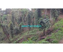 1.80 acres farm land estate for sale at Attapady. Pepper arecanut Estate