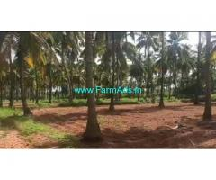 25 Acres Coconut plantation for sale at Hiriyur, Muskal - Hemdala road