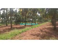 25 Acres Coconut plantation for sale at Hiriyur, Muskal - Hemdala road
