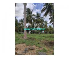 5.50 acres farm land for sale at udumalpet to palladam main road