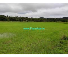 20 Acres Farm Land for sale at Chikmagalur