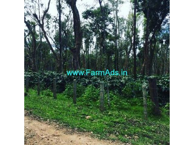 5 Acre Coffee Land for Sale Near Sakleshpur,Belur Road