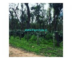 5 Acre Coffee Land for Sale Near Sakleshpur,Belur Road