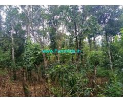 7 Acre Farm Land for Sale Near Mudigere