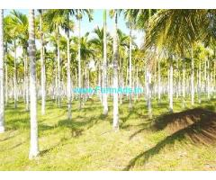 8.5 Acre Farm Land for Sale Near Sira