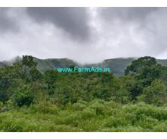 3 Acre Farm Land for Sale Near Mudigere