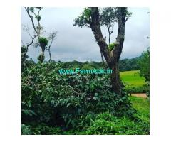 3 Acre Coffee Land for Sale Near Sakleshpur