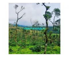85 Acre Coffee Land for Sale Near Sakleshpur