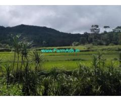 4 Acre Agriculture Land for Sale Near Mudigere