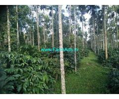 13 Acre Farm Land for Sale Near Belur