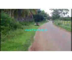 5 Acres yielding Arecanut plantation for sale near Hiriyur