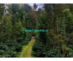 200 Acre Coffee Land for Sale Near Chikmagalur