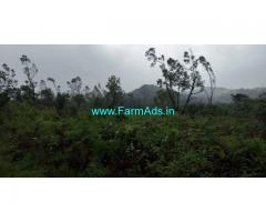 25 Gunta Land for Sale Near Mudigere
