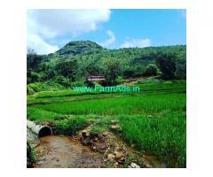 1 Acre Farm Land for Sale Near Sakleshpur