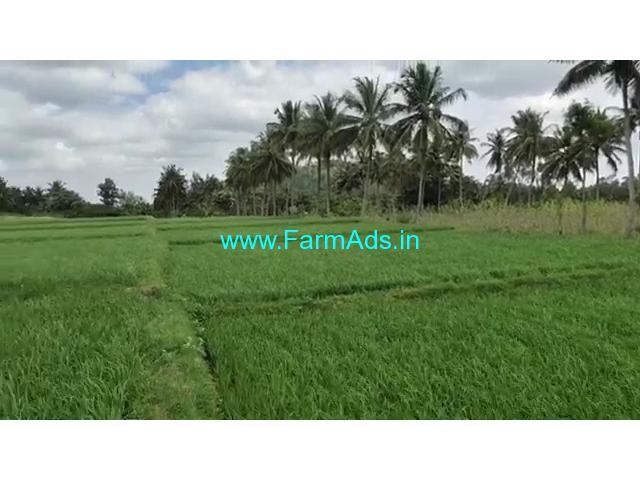 1 Acres 21 Gunta Farm land for sale Mandya - Mysore Road, near Arakere.