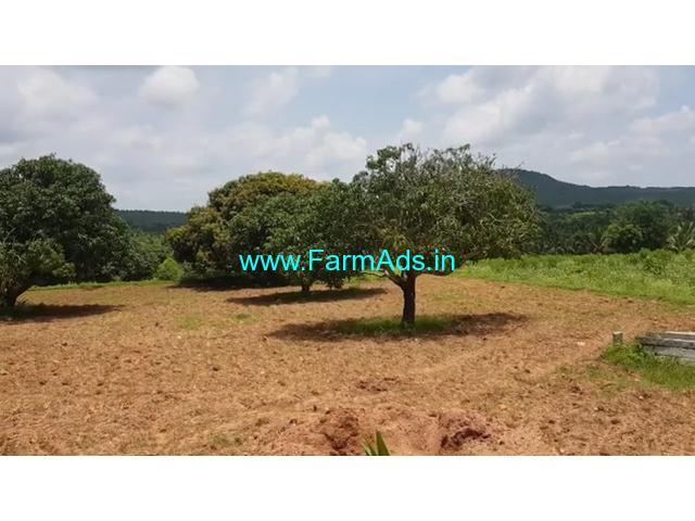 4 Acres 20 Gunta Mango Farm For Sale In Near Gaduge Road Mysore