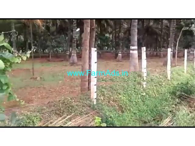 2 acre coconut farm house for sale near t narsipura