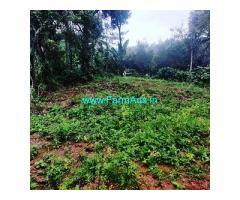 2.23 Acre Coffee Land for Sale Near Sakleshpur