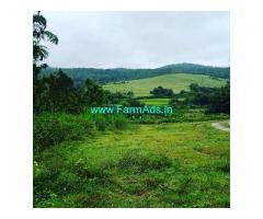 2 Acre Farm Land for Sale Near Sakleshpur
